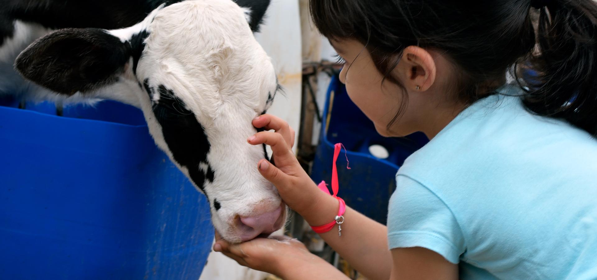 Agroturismo: un posible complemento económico para nuestras granjas — Omnivoraz