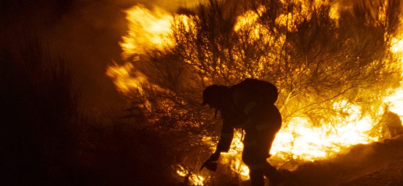 Lo que arde, de Oliver Laxe: una historia de fuego, sacrificio y amor — Cine — Omnivoraz