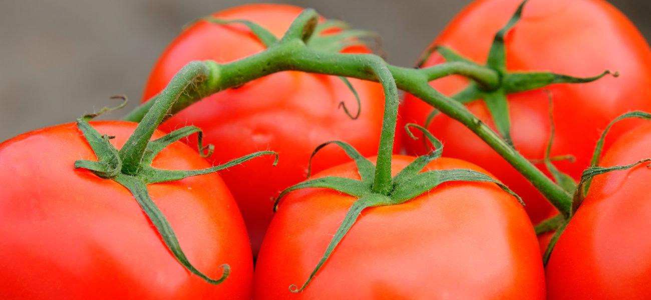 Dieta de proximidad para defenderse de los virus desde dentro — Omnivoraz