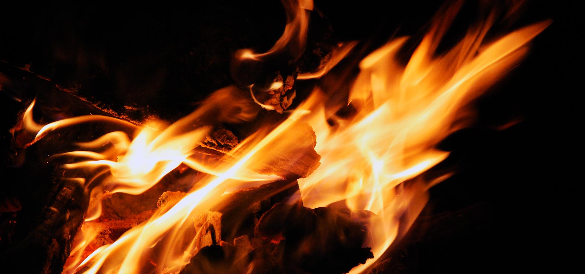 Loa á noite meiga (San Xoán) — Omnivoraz