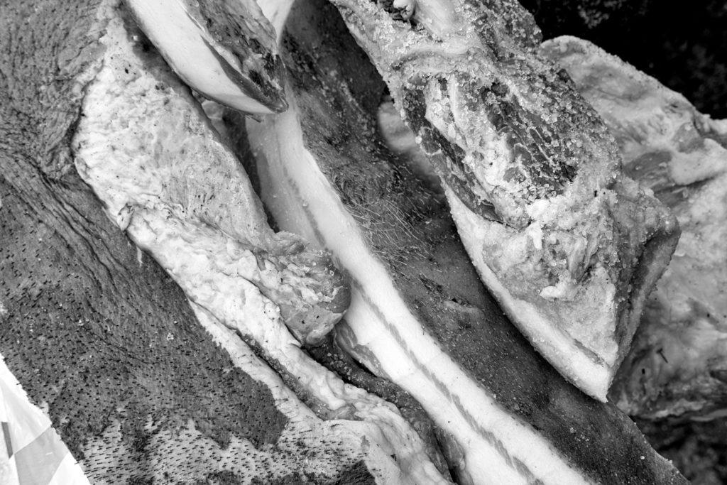 Un futuro incierto (y IV): los alimenta — Omnivoraz